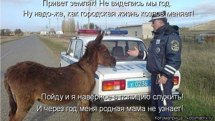 Котоматрица: Привет земляк! Не виделись мы год. Ну надо-же, как городская жизнь козлов меняет! Пойду и я наверное в полицию служить! И через год меня родна?