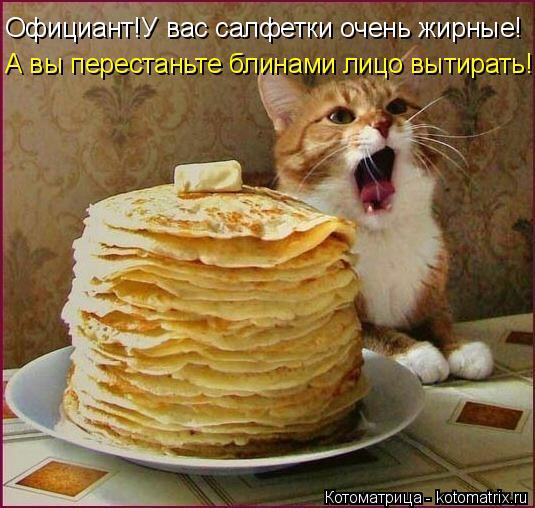 Котоматрица: Официант!У вас салфетки очень жирные! А вы перестаньте блинами лицо вытирать!