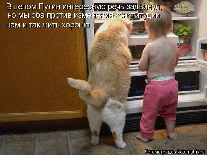 Котоматрица: В целом Путин интересную речь задвинул, но мы оба против изменения конституции, нам и так жить хорошо