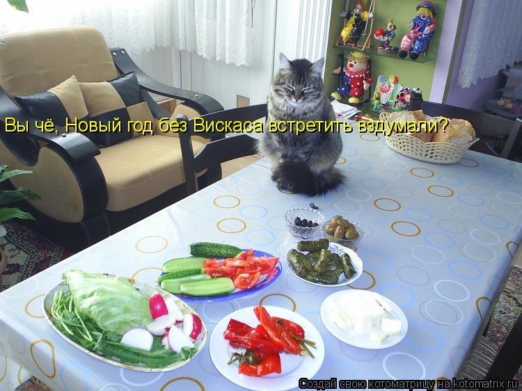 Котоматрица: Вы чё, Новый год без Вискаса встретить вздумали?