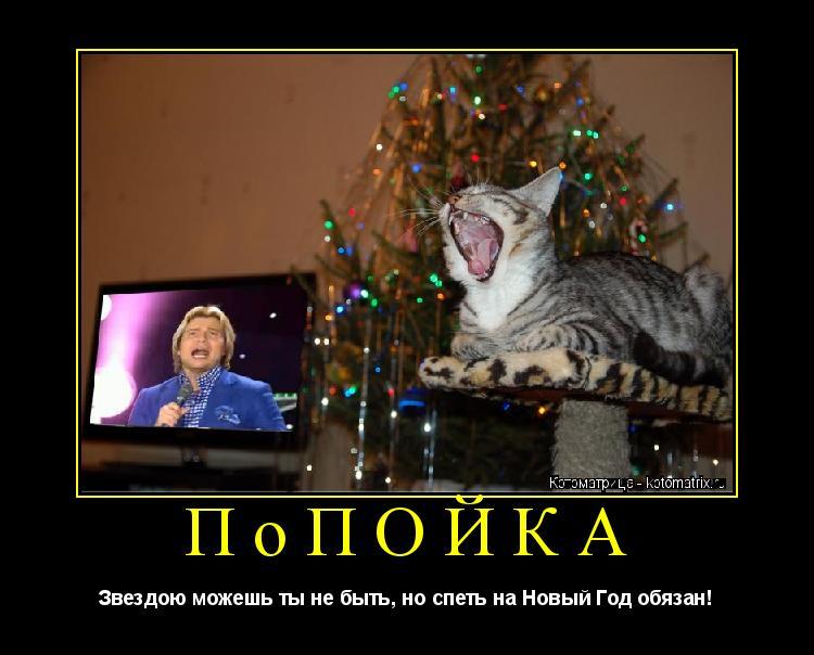 Котоматрица: ПоПОЙКА Звездою можешь ты не быть, но спеть на Новый Год обязан!