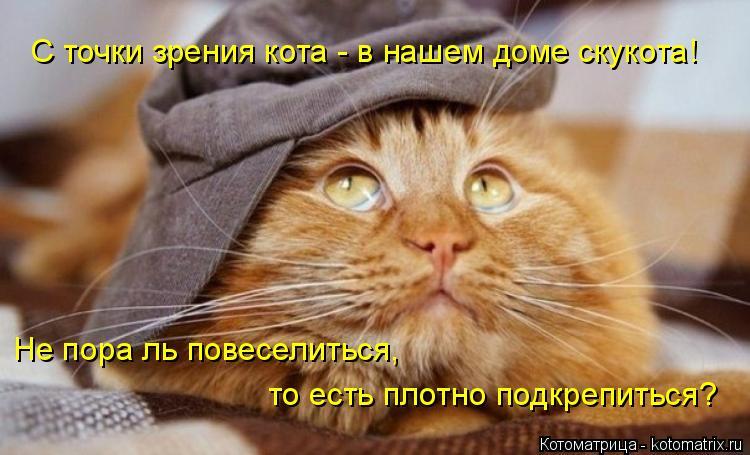 Котоматрица: С точки зрения кота - в нашем доме скукота! Не пора ль повеселиться,  то есть плотно подкрепиться?