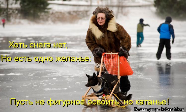 Котоматрица: Хоть снега нет, Но есть одно желанье: Пусть не фигурное освоить, но катанье!