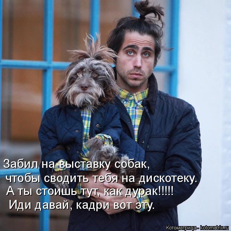 Котоматрица: Забил на выставку собак,  Иди давай, кадри вот эту. чтобы сводить тебя на дискотеку. А ты стоишь тут, как дурак!!!!!