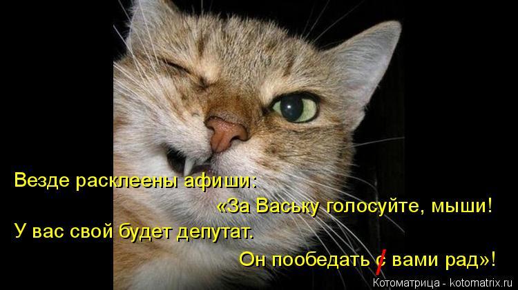 Котоматрица: Везде расклеены афиши: «За Ваську голосуйте, мыши! У вас свой будет депутат. Он пообедать с вами рад»! /