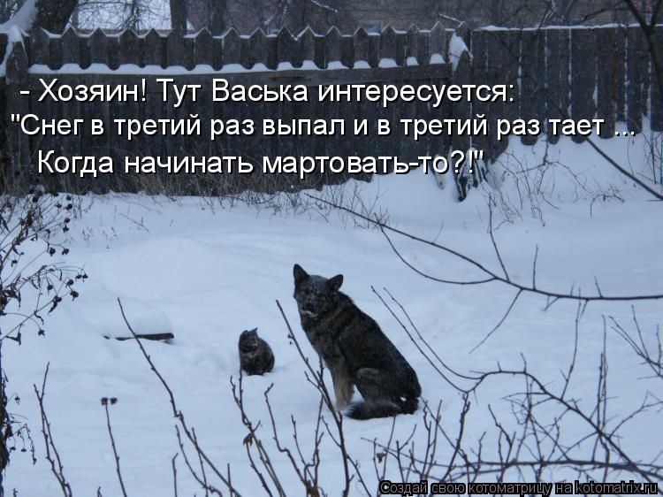 """Котоматрица: - Хозяин! Тут Васька интересуется: """"Снег в третий раз выпал и в третий раз тает ...  Когда начинать мартовать-то?!"""""""