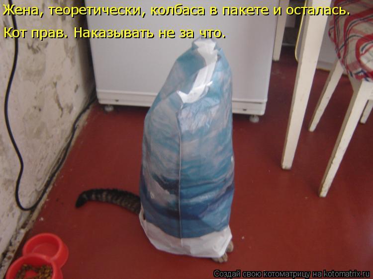 Котоматрица: Жена, теоретически, колбаса в пакете и осталась.  Кот прав. Наказывать не за что.