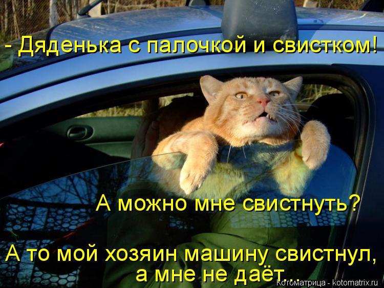 Котоматрица: - Дяденька с палочкой и свистком! а мне не даёт... А то мой хозяин машину свистнул, А можно мне свистнуть?
