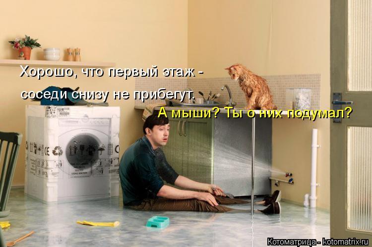 Котоматрица: Хорошо, что первый этаж -  соседи снизу не прибегут. А мыши? Ты о них подумал?