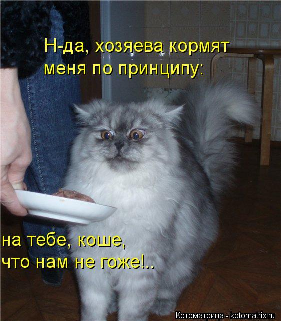 Котоматрица: Н-да, хозяева кормят  меня по принципу: на тебе, коше,  что нам не гоже!..