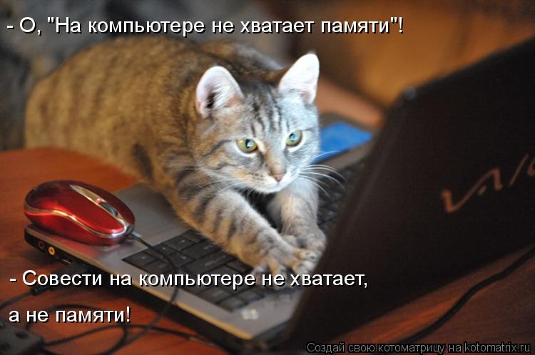 "Котоматрица: - О, ""На компьютере не хватает памяти""! - Совести на компьютере не хватает, а не памяти!"