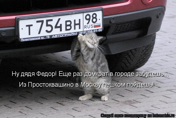 Котоматрица: Ну дядя Федор! Еще раз домкрат в городе забудешь... Из Простоквашино в Москву пешком пойдешь!