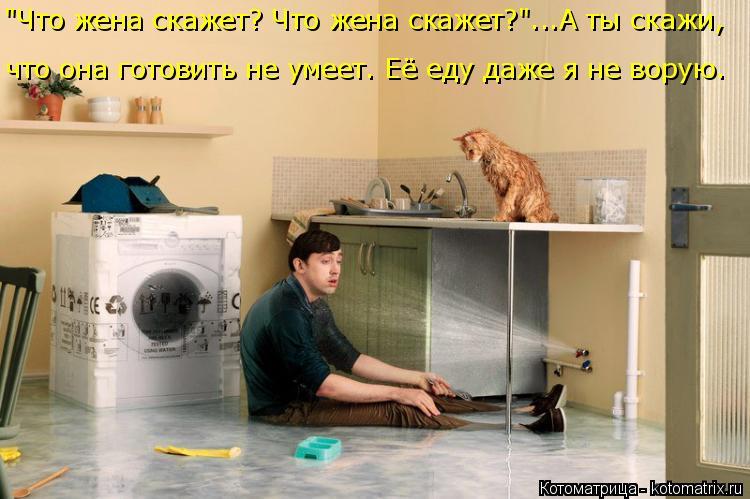 """Котоматрица: что она готовить не умеет. Её еду даже я не ворую. """"Что жена скажет? Что жена скажет?""""...А ты скажи,"""
