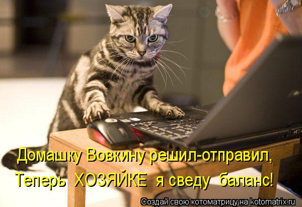 Котоматрица: Домашку Вовкину решил-отправил, Теперь  ХОЗЯЙКЕ  я сведу  баланс!