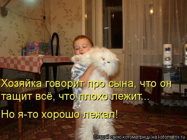 Котоматрица: Хозяйка говорит про сына, что он  тащит всё, что плохо лежит... Но я-то хорошо лежал!