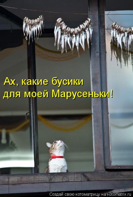 Котоматрица: Ах, какие бусики для моей Марусеньки!
