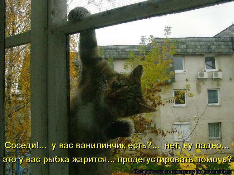 Котоматрица: Соседи!...  у вас ванилинчик есть?...  нет, ну ладно... это у вас рыбка жарится... продегустировать помочь?