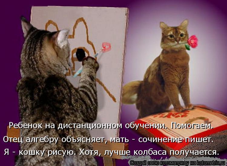 Котоматрица: Ребенок на дистанционном обучении. Помогаем. Отец алгебру объясняет, мать - сочинение пишет.  Я - кошку рисую. Хотя, лучше колбаса получается.