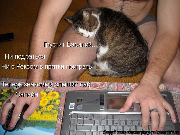 Котоматрица: Ни подраться Ни с Рексом в прятки поиграть Онлайн Грустит Василий...  Теперь знакомый слышит лай
