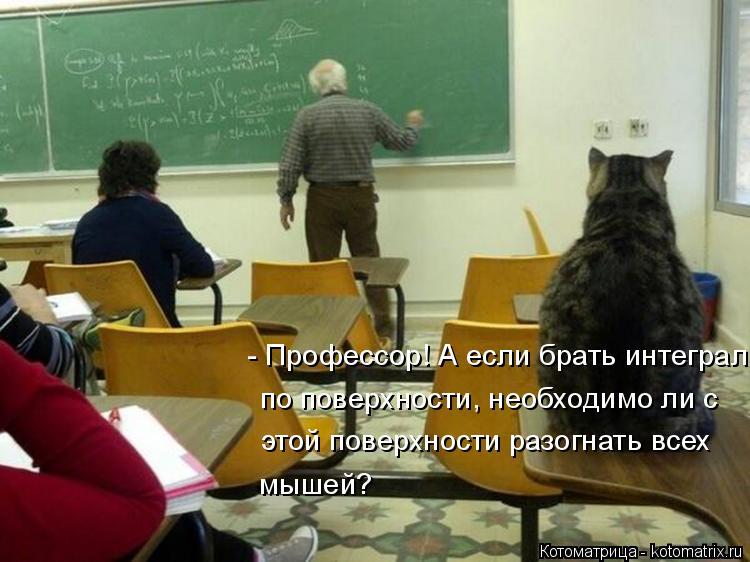 Котоматрица: - Профессор! А если брать интеграл  по поверхности, необходимо ли с  этой поверхности разогнать всех  мышей?