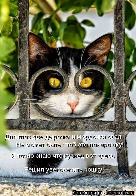 Котоматрица: Для глаз две дырочки и мордочки овал Не может быть чтоб это понарошку! Я точно знаю что кузнец вот здесь Решил увековечить кошку!