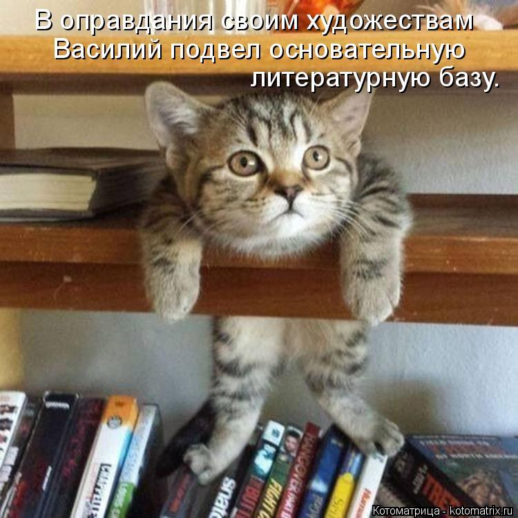 Котоматрица: В оправдания своим художествам Василий подвел основательную литературную базу.
