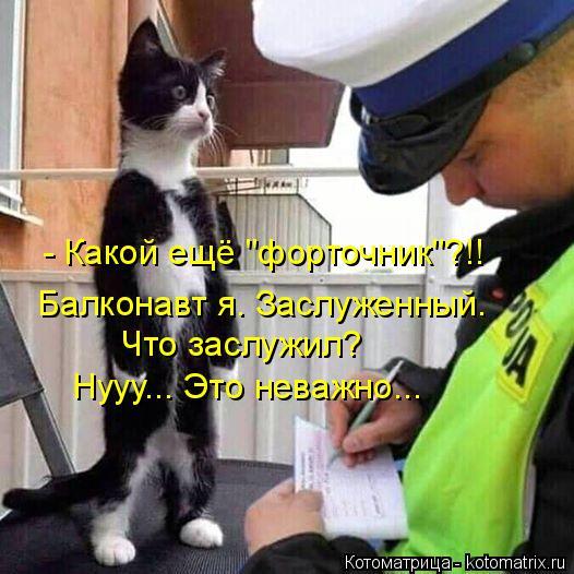 """Котоматрица: - Какой ещё """"форточник""""?!!  Балконавт я. Заслуженный.  Что заслужил?  Нууу... Это неважно..."""