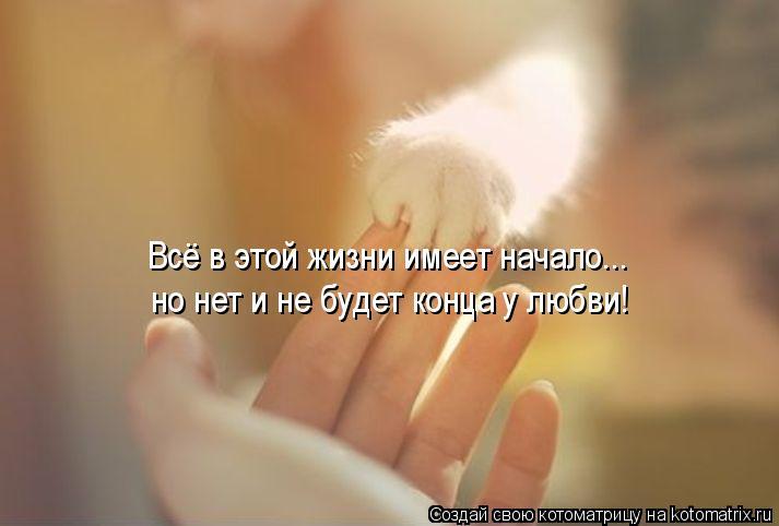 Котоматрица: Всё в этой жизни имеет начало... но нет и не будет конца у любви!