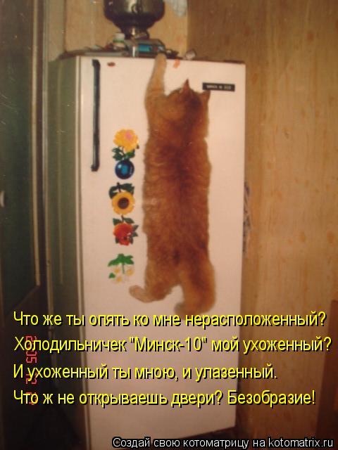 """Котоматрица: Что же ты опять ко мне нерасположенный? Холодильничек """"Минск-10"""" мой ухоженный? И ухоженный ты мною, и улазенный. Что ж не открываешь двери? Бе?"""