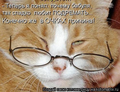 Котоматрица: - Теперь я понял: почему бабуля, так сладко  любит ПОДРЕМАТЬ... Конечно же  в ОЧКАХ причина!