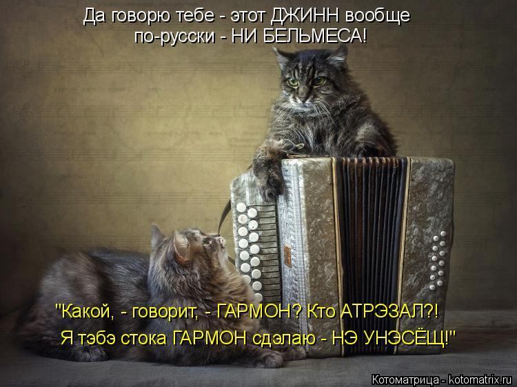 """Котоматрица: Да говорю тебе - этот ДЖИНН вообще по-русски - НИ БЕЛЬМЕСА! """"Какой, - говорит, - ГАРМОН? Кто АТРЭЗАЛ?! Я тэбэ стока ГАРМОН сдэлаю - НЭ УНЭСЁЩ!"""""""