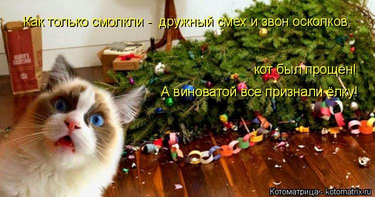 Котоматрица: Как только смолкли -  дружный смех и звон осколков, А виноватой все признали ёлку! кот был прощён!