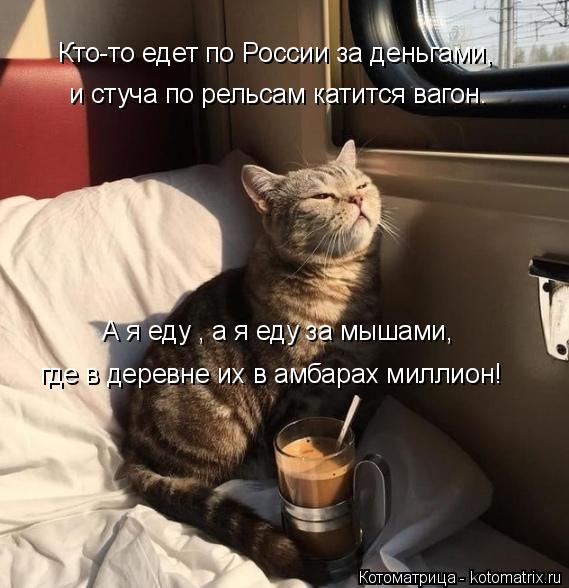 Котоматрица: А я еду , а я еду за мышами, где в деревне их в амбарах миллион! и стуча по рельсам катится вагон. Кто-то едет по России за деньгами,