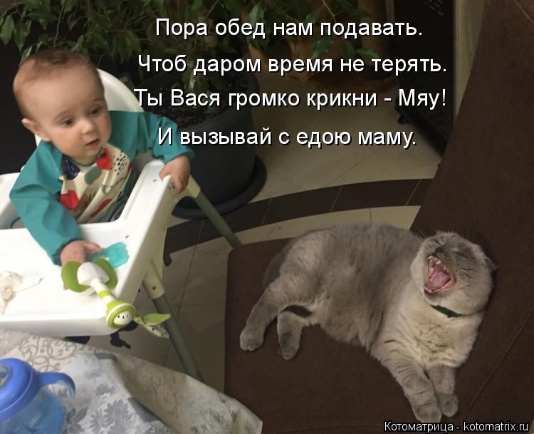 Котоматрица: Пора обед нам подавать. Ты Вася громко крикни - Мяу! Чтоб даром время не терять. И вызывай с едою маму.