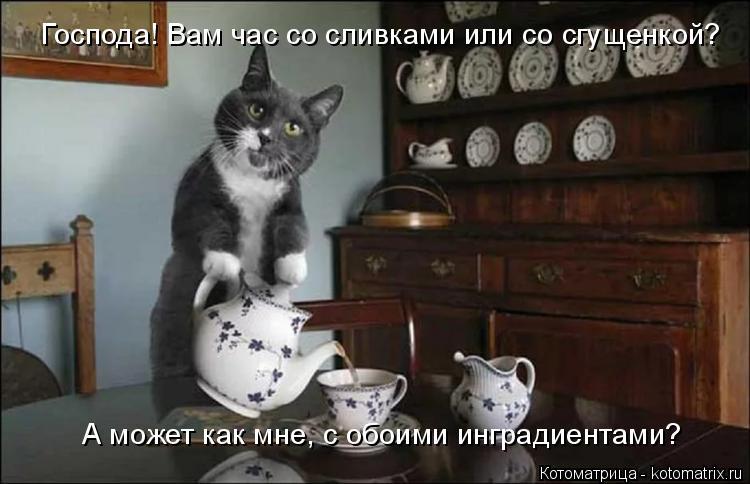 Котоматрица: Господа! Вам час со сливками или со сгущенкой? А может как мне, с обоими инградиентами?