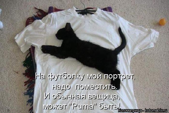 """Котоматрица: На футболку мой портрет,  надо  поместить. И обычная вещица, может """"Puma"""" быть!"""