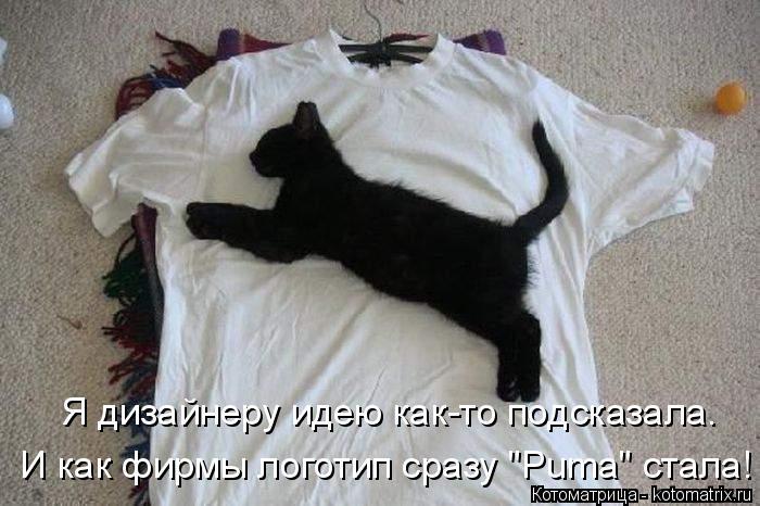 """Котоматрица: Я дизайнеру идею как-то подсказала.  И как фирмы логотип сразу """"Puma"""" стала!"""